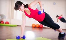 $49 for Eight Semi-Private Group Training Sessions at Miller Essential Fitness ($160 Value)
