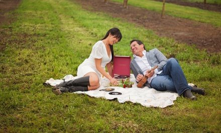 $80 for On Location Family, Couple, or Maternity Session by Jonelle DeMarco Photography ($250 Value)