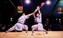 8 or 16 Shaolin Kung Fu Classes at Shaolin Temple USA Culture Center (Up to 77% Off)