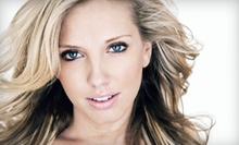 Haircut, Deep Conditioning, and Optional Highlights or All-Over Color from Denise Collins at Hairspray (Up to 51% Off)