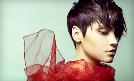One or Two Haircut Packages with Deep-Conditioning Treatment and Blowout at Olympia Salon (Up to 59% Off)