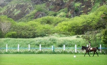One-Hour Horseback Trail Ride for One, Two, or Four from Koko Crater Stables (Up to 55% Off)