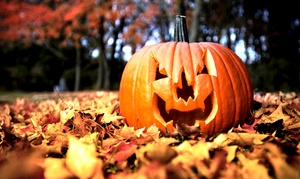 Halloween Party Passports For Manayunk Or Center City (up To 50% Off)