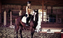 Two or Four 60-Minute Private Horseback-Riding Lessons at Rosehill Farm (Up to 57% Off)