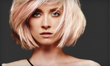 One or Three Haircut Packages with Botanical Hair Therapy at Mood Swings Aveda Salon and Skin Spa (Up to 62% Off)