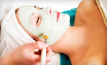Deluxe Spa Facial or Anti-Aging Facial and Three Optional Waxes at Mauldin Massage &amp; Day Spa (Up to 57% Off)