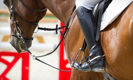 One, Three, or Five 60-Minute Horseback-Riding Lessons from Elite Stables (Up to 68% Off)