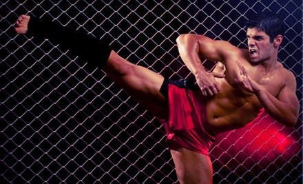 One-Month Grappling, Striking, or Combo MMA Package at Empire Academy (Up to 77% Off)