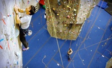 Intro Rock-Climbing Class and One Month of Unlimited Climbs for One, Two, or Four at The Rock Club (Up to 78% Off)