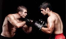 4 or 10 Muay Thai, Brazilian Jujitsu, or Mixed-Martial-Arts Classes at New York San Da Kickboxing (Up to 75% Off)