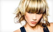 Haircut Package with Optional Root Touchup or Partial or Full Highlights at The Color Room Hair Salon (Up to 54% Off)