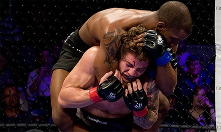 Chicago Cagefighting Championship Sponsors APFC 17 Tickets at Sears Centre with Beers on October 11 (Up to 49% Off)