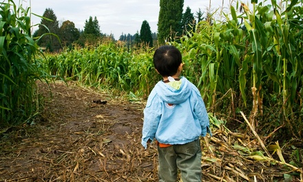 Two or Four Tickets to a Corn Maze with Option for Haunted Maze at Talladay Farms (Up to 50% Off)