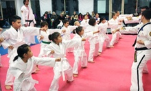 5 or 10 Martial-Arts Classes at ATA Elite Martial Arts (Up to 72% Off)