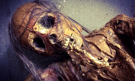 Speedpass Admission to The Haunt on October 9, 12, 16, 19, or 22 (Up to 50% Off)