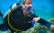 C$175 for a PADI Open-Water Diver-Certification Course with Four Dives at Caribbean Dreams Diving (C$375 Value)