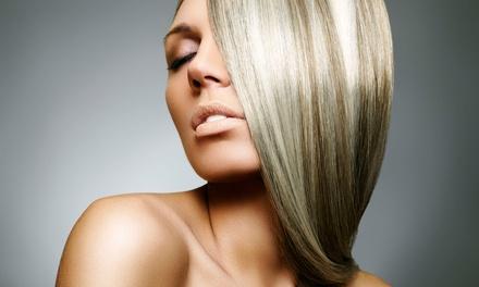 Haircut with Optional Color or Full Highlights with Complimentary Beverages at Muse Salon & Spa (Up to 66% Off)