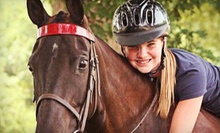 Three or Five 30-Minute Beginner Riding Lessons at Lenux Stables &amp; Riding Academy, Inc. (Up to 56% Off)