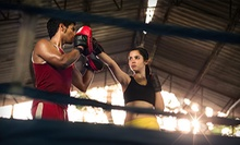 12 or 24 Boxing, Kickboxing, or Cage Fitness Classes at Kelly's Championship Martial Arts, Inc. (Up to 60% Off)