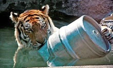 After-Hours Zoo Brew with Live Music for 2, 6, or 10 at Blank Park Zoo (Up to 64% Off)