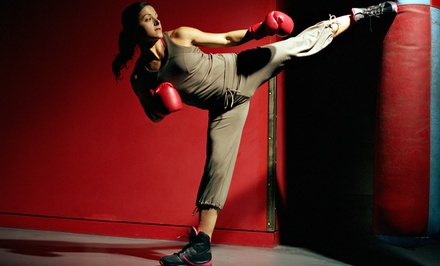 10, 20, or 30 Kickboxing Classes with Gloves at American Academy of Martial Arts (Up to 74% Off)