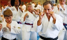 $39 for One Month of Unlimited Classes for an Adult or Child at Asheville Sun Soo Tae Kwon Do ($185 Value)