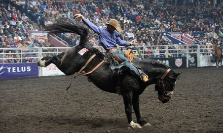$25.62 for the Canadian Finals Rodeo for One at Rexall Place on November 8 or 9 at 1 p.m. ($51.25 Value)