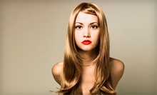 Haircut and Blow Dry with Optional Color or Conditioning Treatment from Katie Morgan (Up to 53% Off)