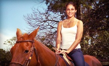 One or Two 30-Minute Horseback-Riding Lessons at Saddleup-Austin (Up to 51% Off)