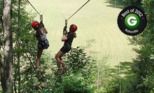 $45 for a Two-Hour Day Tour or Night Lantern Tour at Carolina Ziplines Canopy Tour (Up to $90 Value)