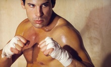 10 or 20 Muay Thai Kickboxing Classes with a Pair of Boxing Gloves at Ring of Fire Martial Arts Academy (Up to 77% Off)
