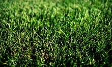 $40 for Weed Control and Nutsedge Treatment with Iron from Weed Man ($102 Value)