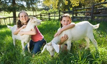 Public or Private Admission to a Petting Zoo for Up to Four at Tashunka Farms (Half Off)