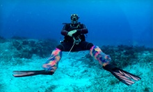 Intro or Advanced Scuba Class or Certification Package at Scuba Sensations (Half Off)