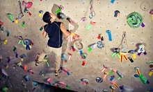 One-Month or 10-Visit Beginner Rock-Climbing Package for One or Two at Coastal Climbing Centre (Up to 76% Off)