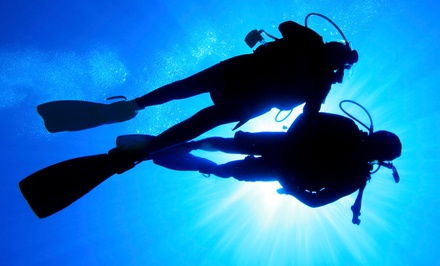 Discover Scuba, PADI Open-Water Certification, or Free-Diving Course at Gigglin' Marlin Divers (Up to 49% Off)