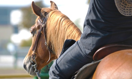 One, Two, or Four 60-Minute Private Horseback-Riding Lessons at Crossorads Natural Horsemanship (Up to 51% Off)