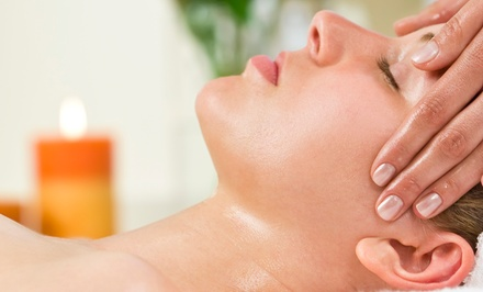 Two Microdermabrasion Treatments or a Skin-Therapy Package at The Salon on Rahn- Jodi Dascalos (Up to 56%Off)