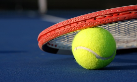 5 or 10 Tennis Classes or 10 Beginner or Advanced-Beginner Clinics at Yorkville Tennis Club (Up to 53% Off)