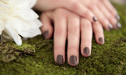 Shellac Mani, Hot Oil or Paraffin Mani and Spa Pedi, or Massage and Mani at J-Nails Spa & Salon (Up to 55% Off)