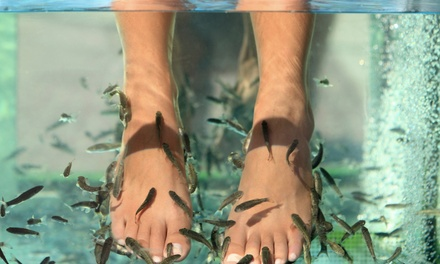 Fish Therapy with Optional Pedicure or Mani-Pedi at Yvonne's Day Spa (Up to 51% Off)