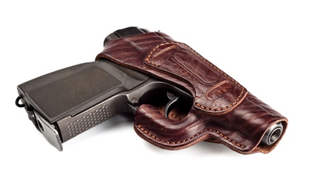 8- or 16-Hour Illinois Concealed-Carry Class for One at Priority Tactical (42% Off)