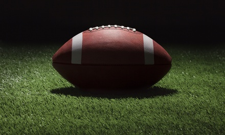 Minnesota Vikings Game on November 2 at 12 p.m. from Ticket King Minnesota (40% Off). Two Seating Options Available.
