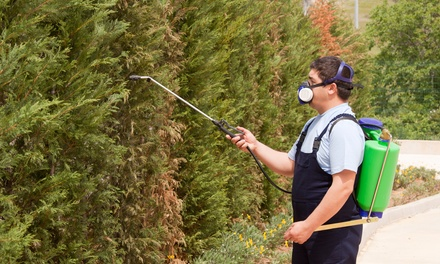 $48 for $95 Worth of Pest-Control Services — Grass Roots