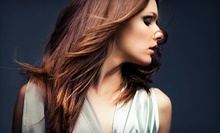 $55 for Single Process Touch-Up with Designer Haircut at Peter Alexandra Salon & Spa