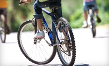 $12 for One Bike Rental for Three Hours at Must See Central Park