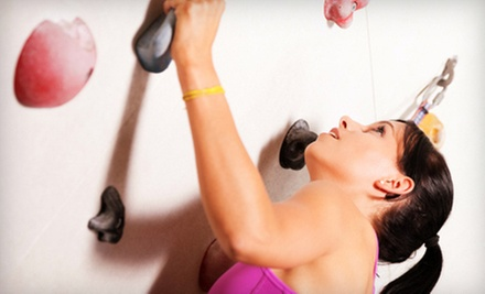 $8 for an Adult Day Pass for Ages 11 and Older at Austin Rock Gym