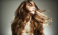$87 for Partial Highlights and a Haircut at Hair by Aimee Lafave