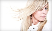 $26 for a Shampoo and Blowout at Orbit Salon