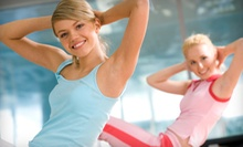 $11 for a One Day Guest Pass  at Dany Holdstein Dance &amp; Fitness